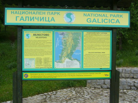 npgalicicasign